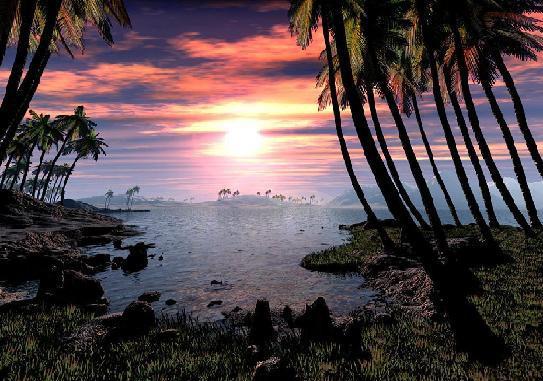 Нажмите на изображение для увеличения Название:  3d palm.JPG Просмотров: 321 Размер:54.5 Кбайт ID:284770