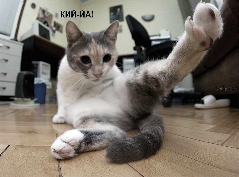 Нажмите на изображение для увеличения Название:  talkin_cats_6.jpg Просмотров: 129 Размер:71.4 Кбайт ID:362941