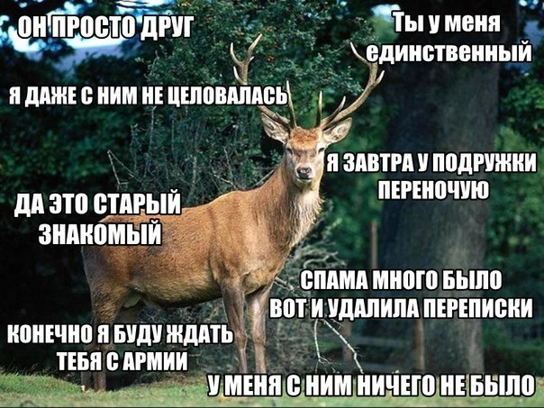 rogonostsi-muzhiki